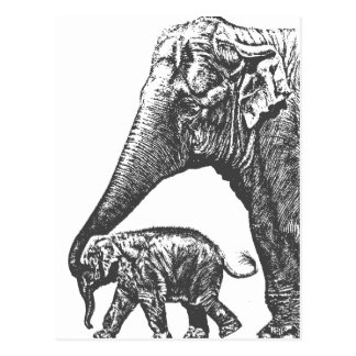 mum elephant and baby postkarte