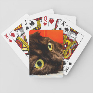 Munchkin Katzen-niedliches Gesicht Spielkarten