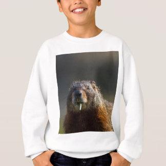 Murmeltier Sweatshirt