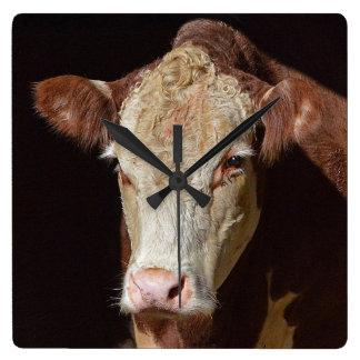 Mürrische Kuh Quadratische Wanduhr
