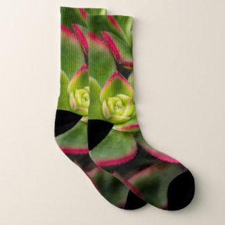 Mutige bunte Kaktus-Foto-Socken Socken