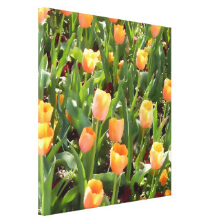 Mutige orange Tulpe-Feld-Malerei Leinwanddruck