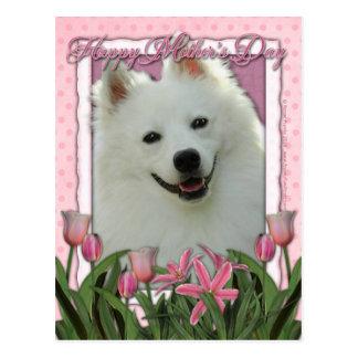 Mutter-Tag - rosa Tulpen - amerikanischer Eskimo Postkarte