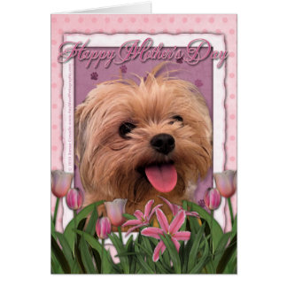 Mutter-Tag - rosa Tulpen - Morkie - Lacey Karte