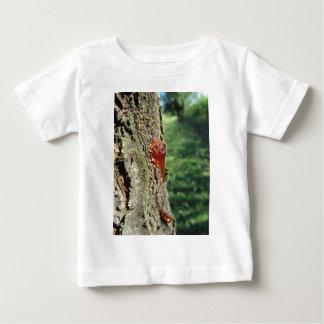 Nahaufnahme der Birnenbaumausscheidung des Baby T-shirt