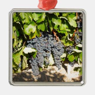 Napa Trauben Quadratisches Silberfarbenes Ornament