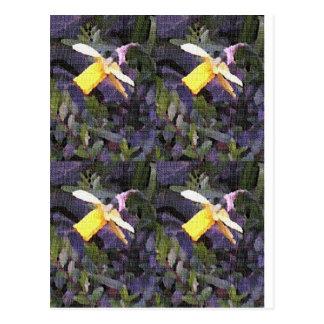 Narzissen-Gemisch Postkarte