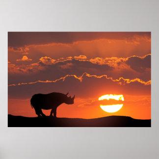 Nashorn am Sonnenuntergang, Masai Mara, Kenia Poster