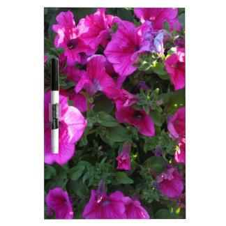 Natur, Flora, rosa Blume Whiteboard