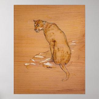 Natur-Sammlung - Puma Poster