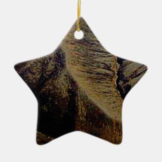 natürliche Stiche Keramik Ornament