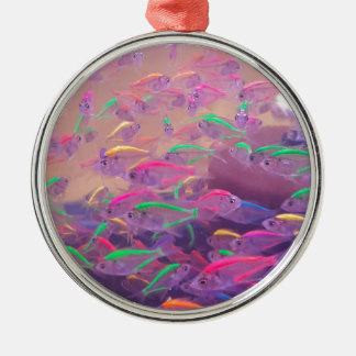 Neonfische in einem Aquarium Silbernes Ornament