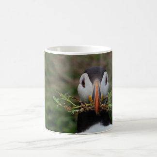Nest-Erbauer-Papageientaucher Tasse