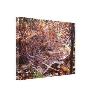 Netz der europäischen Garten-Spinne wickelte Leinwanddruck