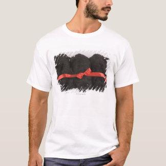 Neufundland-Welpenschlafen (Canis T-Shirt