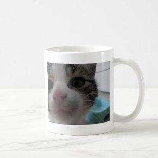 Neugieriges Kätzchen Tasse