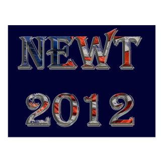 Newt 2012 - Newt Gingrich für Präsidenten Postkarte