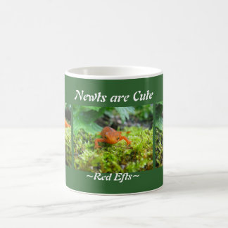 Newts sind niedlich kaffeetasse