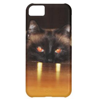Niedlich, lustig, Vampirekatze iPhone 5C Hülle