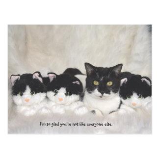 Niedliche Katzen-Postkarte Postkarte