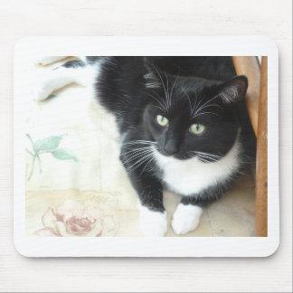 Niedliche schwarze u. weiße Katze Mauspad