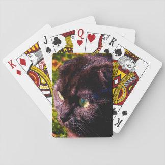Niedliche Scottish falten sonniges Gesicht Spielkarten