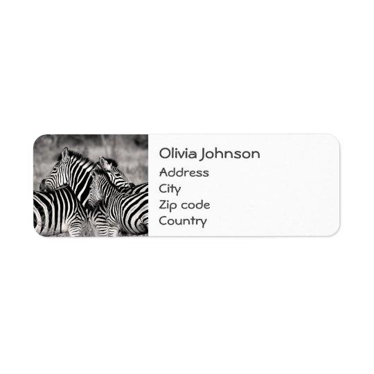 Niedliche Zebra-Herden-Natur-Safari Schwarz-weiß Rückversand-Adressaufkleber