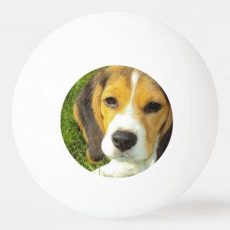 Niedlicher Beagle Tischtennis Ball