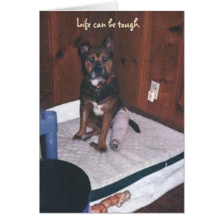 Niedlicher Hund erhalten wohles/gebrochenes Bein Karte