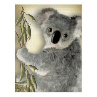 Niedlicher Koala Postkarte