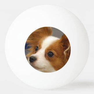 Niedlicher Papillon Hund Tischtennis Ball