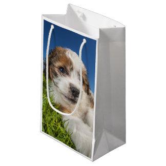 Niedlicher Welpenhund (Shitzu) Kleine Geschenktüte