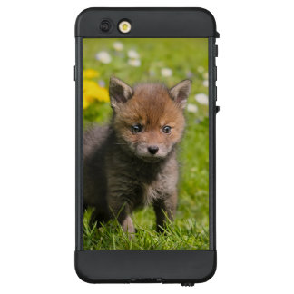 Niedliches flaumiges rotes wildes Baby /_Fox CUB LifeProof NÜÜD iPhone 6 Plus Hülle