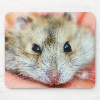 Niedliches Hamster-Gesicht 2 Mauspads