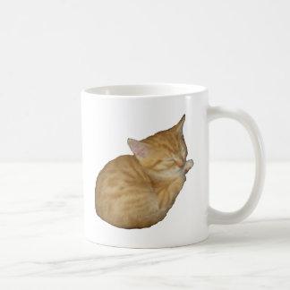 Niedliches Kätzchen Kaffeetasse