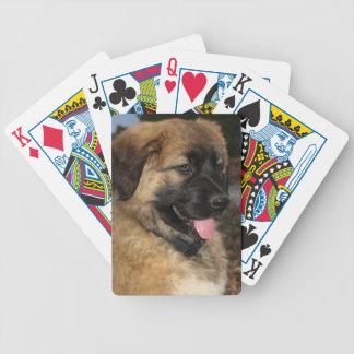 """Niedliches Leonberger Welpe """"Abby"""" Foto Pokerkarten"""