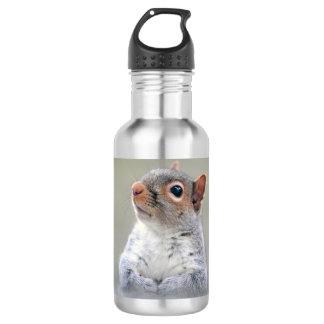 Niedliches neugieriges Eichhörnchen-Profil-Foto Edelstahlflasche