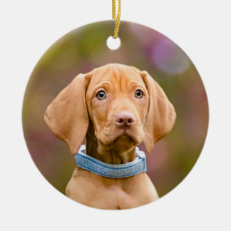 Niedliches puppyeyed Ungar Vizsla Keramik Ornament