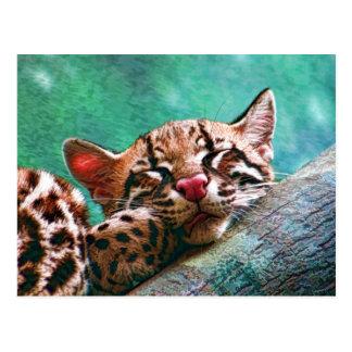 Niedliches Schlafenbabyocelot-Kätzchen Postkarte