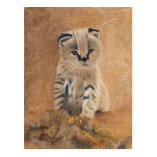 Niedliches wildes Servalkätzchen Postkarte