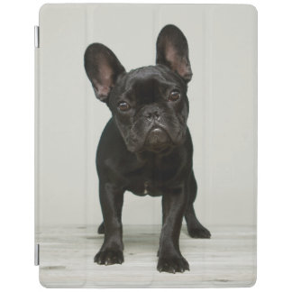 Niedlichster französische Bulldoggen-Welpe iPad Smart Cover