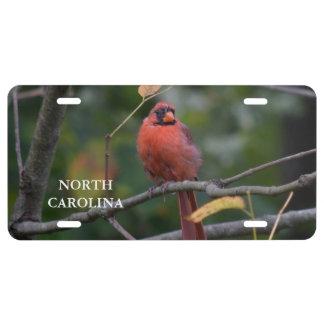 Nord-CarolinaStaats-Vogel US Nummernschild