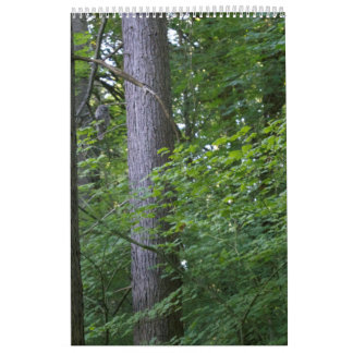 Nordkaliforniens Schönheit Kalender