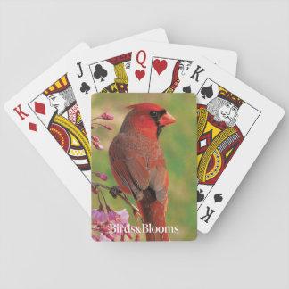 NordKardinal 2 Spielkarten