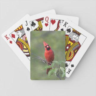 NordKardinal Kartendeck