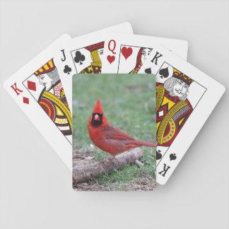NordKardinal Pokerdeck
