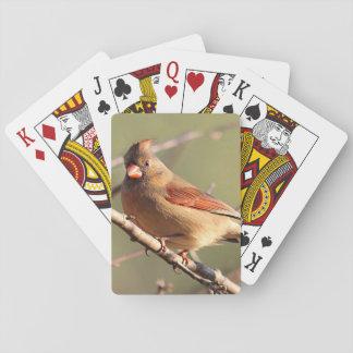 NordKardinal Pokerkarte