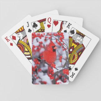 NordKardinalsmann, Winter, IL Spielkarten