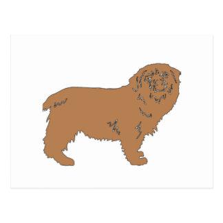 Norfolk-TerrierfarbSilhouette Postkarte