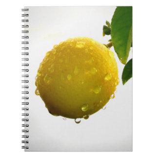 Notizbuch/persönliche Zeitschrift - gelbe Zitrone Spiral Notizbuch